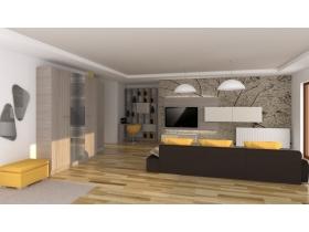 Proiect living (5)