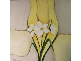 Narcise albe